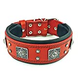 Bestia Eros Collar Red for Big Dogs. 2.5 inch Wide & Soft Padded