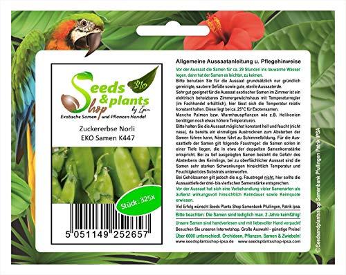 Stk - 325x Zuckererbse Norli EKO- Erbsenschoten Samen Gemüse Erbsen K447 - Seeds Plants Shop Samenbank Pfullingen Patrik Ipsa