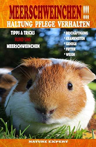 Meerschweinchen Haltung Pflege Verhalten: Meerschweinchen Haltung Buch ob im Gehege, Außengehege oder Unterstand ob Futter, Wasserspender oder ... den Umgang mit Zubehör, Spielzeug und Rassen.
