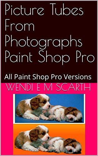 Picture Tubes From Photographs Paint Shop Pro: All Paint Shop Pro Versions (Paint Shop Pro Made Easy Book 377) (English Edition)