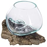 MyGift Mini Natural Driftwood & Molten Glass Bowl Tabletop Plant Terrarium