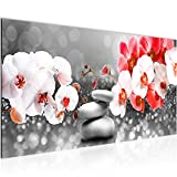 Wandbilder Blumen Orchidee 1 Teilig Modern Vlies Leinwand Wohnzimmer Flur Zen Rot Grau N013212c