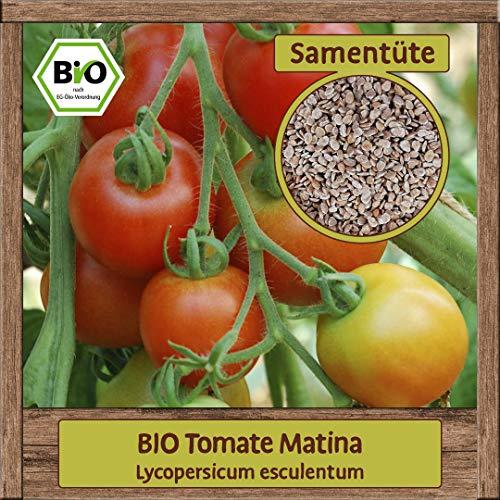 BIO Tomate Samen Sorte Matina (Lycopersicum esculentum) Gemüsesamen Tomate Saatgut