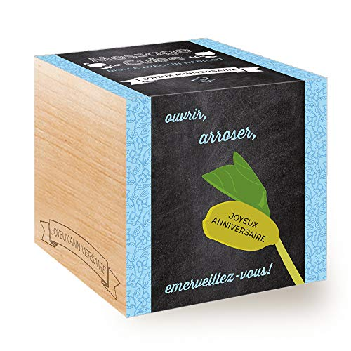 Message Cube, Avec Haricot Magique Gravé Au Laser: Joyeux Anniversaire, Idée Cadeau (100% Ecologique), Grow-Your-Own/Kit Prêt-à-Pousser, Plantes Dans Des Cubes En Bois 7.5cm, Produit en Autriche
