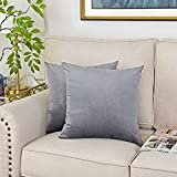 fangzhuo Set of 2 Velvet Throw Pillow Covers Solid Soft Decorative Cushion Covers Pillowcase for Couch Sofa Bed Living Room 18x18 Inch Gray