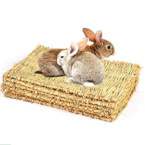 CAMITER 5 alfombrillas de césped para animales pequeños, cama de conejo, alfombrilla de césped natural tejida a mano, seguro y comestible para hámsters, conejos, loros, cobayas y hurones