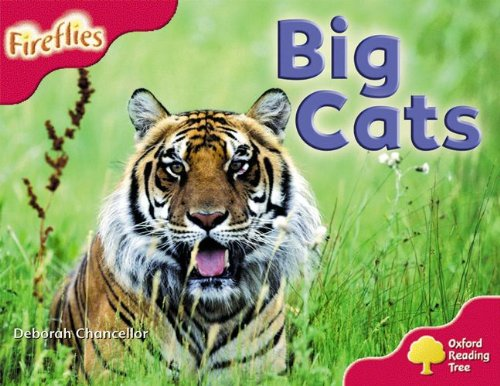 Oxford Reading Tree: Level 4: More Fireflies A: Big Catsの詳細を見る
