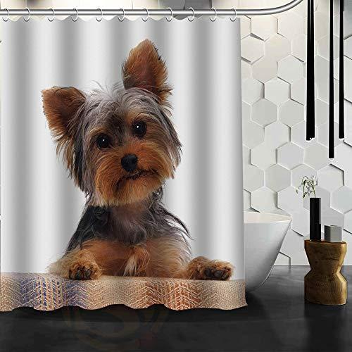 YEDL Best Nice Custom Yorkshire Terrier Hunde Duschvorhang Badvorhang Wasserdichter Stoff für Badezimmer 180 × 180 cm
