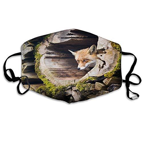 MSGDF MundschutzMundAnti-Staub-Abdeckung,Forest Nature Wild Fox with Hazel Eyes in a Wooden Carved Tree WTH Moss Art Print,MouthCverWiederverwendbareFack-Abdeckung