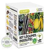 tillmann's kit legume insolite ecocube - graine a planter rapide petite surface balcon - cadeau mon