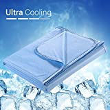 Elegear 2in1 Mikrofaser Kühldecke Sommerdecke - Selbstkühlende Decke für Besseren Schlaf...