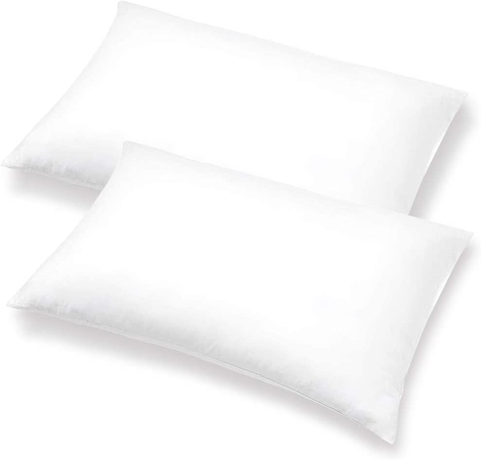 Pillows With A Purpose NEW before selling ☆ Pillow Ranking TOP6 Inserts - of 20