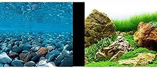 Amazon.es: Marina - Acuarios / Acuarios y peceras: Productos para ...