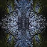 Elastic (Remix)
