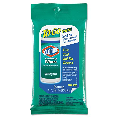 Clorox Disinfecting Wipes to Go Pack Fresh Scent Case Pack 24
