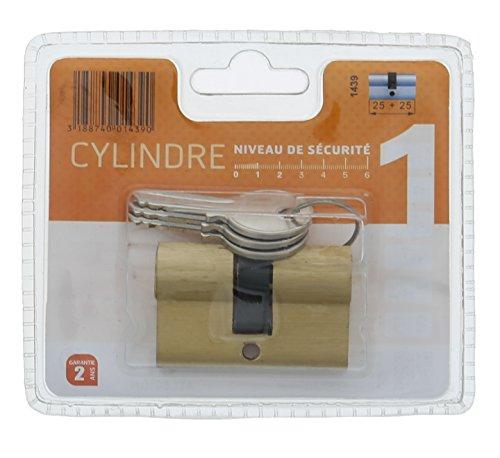 Bricard 1439 Cylindre pratic 25 + 25 Laiton double entrée/niveau de sécurité 1