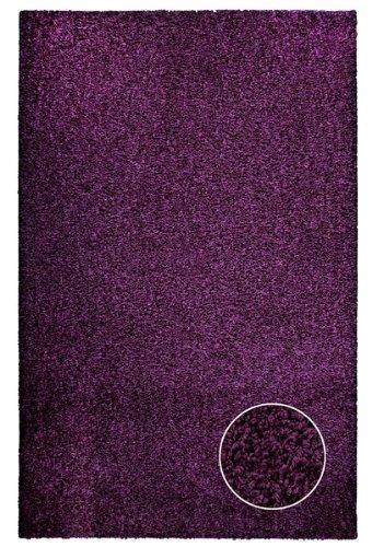 Livone Poil Long Tapis Shaggy - Coleur Violette Aubergine - Moderne et élégant Dimension 60 x 100 cm