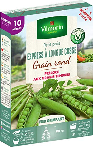 Vilmorin Pois Express a Longue cosse Boite série 10m, Vert