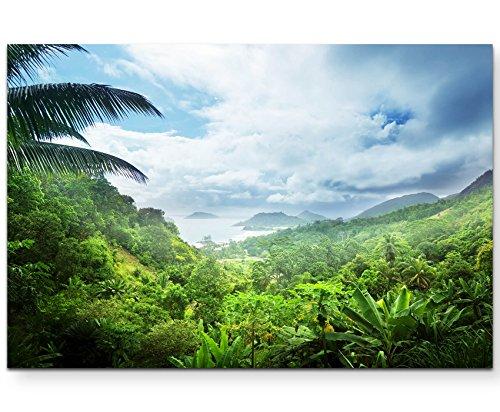 Paul Sinus Art Leinwandbilder | Bilder Leinwand 120x80cm Regenwald der Seychellen