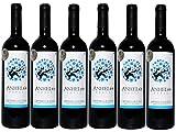 Anhelo Roble Tempranillo/Syrah - Vino de la Tierra de Castilla - UGM Campo de Calatrava - 6 botellas de 750ml - Total 4500ml.