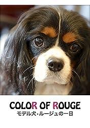 Color of Rouge モデル犬ルージュの一日 中小原直之 (著), ENDUON (編集)