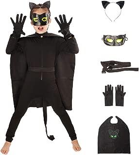 cat noir mask