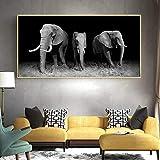 wZUN Elefante Africano Negro Animal Salvaje Lienzo Pintura Carteles escandinavos e Impresiones Sala de Estar Mural Imagen 50x100cm