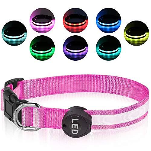 Plartree Collare per Cani LED Ricaricabile USB, Collare con Luce Lampeggiante Impermeabile, Collari per Cani Regolabili 8 Colori per Cani di Piccola/Media/Grande
