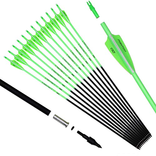 Pointdo 30inch Carbon Arrow Fluorescence Color Targeting and Hunting Practice Arrows for Recurve and Compound Bow with Removable Tips (Fluorescein Green)
