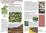 Invitez la nature dans votre jardin