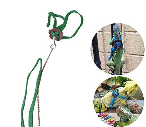 Vivian Adjustable Lizard Reptile Pet Harness Leash for Outdoor Walk 3.9FT/1.2 M (Green)