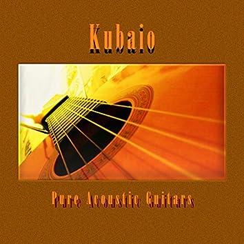 Pure Acoustic Guitars