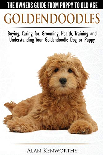 Best Goldendoodle Training Book