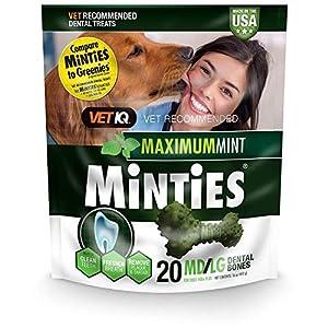 Minties Dog Dental Bone Treats, Mint, Medium/Large, 16 oz (Pack of 2)