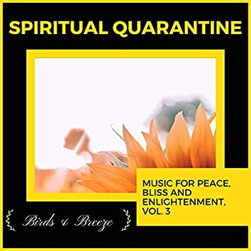 Spiritual Quarantine - Music For Peace, Bliss And Enlightenment, Vol. 3
