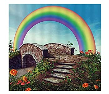 Rainbow Bridge Fresh Natural Style Arch Creek Stone Road Flower Plant Weeds Pastoral DIY 5D Diamond Painting Full Round Drill Embroidery Cross Stitch Arts Craft Canvas Wall Decor 16x20 inch