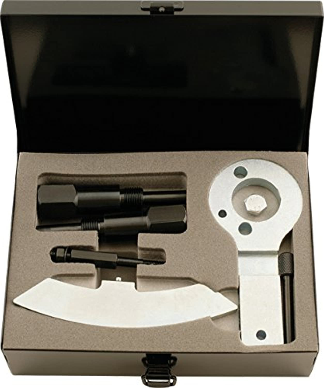 KS Tools 400.2400 Alfa Romeo   Fiat - Motoreinstell-Werkzeug-Satz, 7-tlg. B00BOVMC8C | Verwendet in der Haltbarkeit