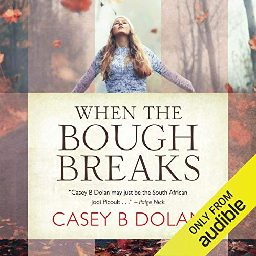 When The Bough Breaks audiobook cover art