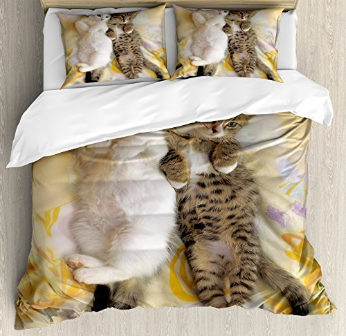 Ambesonne Funny Duvet Cover Set, Kitten Siblings Lying Beside Sleepy Heads Cat Pet Animal Lovers Best Friends Image, Decorative 3 Piece Bedding Set with 2 Pillow Shams, Queen Size, Pastel Cream