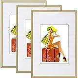 WOLTU Marcos de Fotos Juego de 3 Vidrio Frontal Marcos 30x40 cm Marco de Plástico Estilo Vintage para Gift, Cumpleaños Marcos Oro