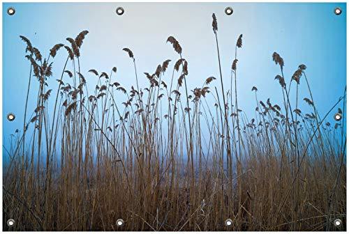 Wallario Garten-Poster Outdoor-Poster, Schilfrohr am See vor blauem Himmel in Premiumqualität, für den Außeneinsatz geeignet