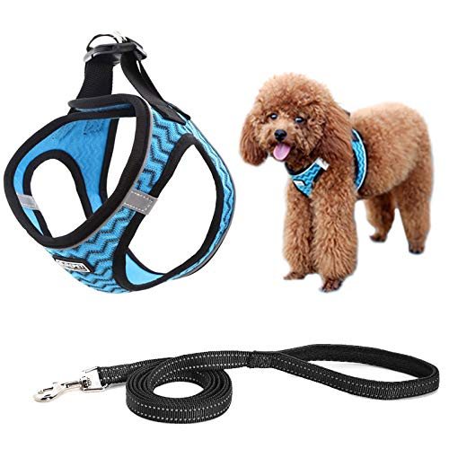 MIEMIE Step-in Air Dog Harness and Leash No Pull, Reflective and Breathable Pet Harness, Adjustable Soft Padded Vest Harness for Puppy Small Medium Dogs & Cats Blue XS
