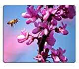 Bee Purple Flower Bulb small flowers branch sky Mouse Pads Customized Made to Order Support Ready 9 7/8 Inch (250mm) X 7 7/8 Inch (200mm) X 1/16 Inch (2mm) Eco Friendly Cloth with Neoprene Rubber Liil Mouse Pad Desktop Mousepad Laptop Mousepads Comfortable Computer Mouse Mat Cute Gaming Mouse_pad