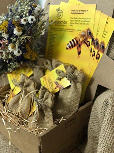 5 Packs of Native Wildflower seedballs, Handmade in Dorset. Bring The Bees Back.