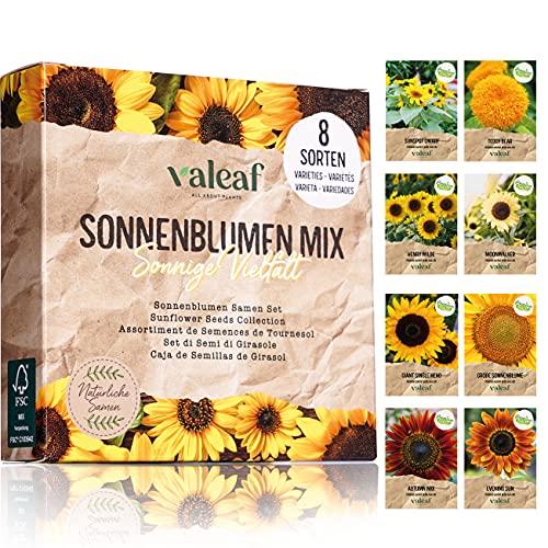 valeaf Sonnenblumen Samen Set I 8 Sorten Sonnenblumensamen I Sonnenblume Blumensamen im praktischen Pflanzen Set I Sommerblumen Samen Wildblumenmischung I Pflanzen Samen ideal als Blumensamen Geschenk