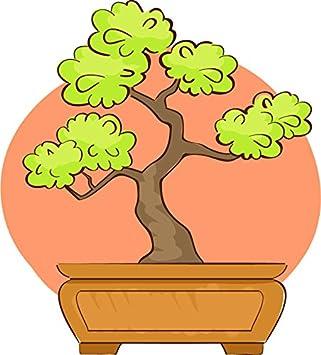 Amazon Com Pretty Simple Bonsai Tree Cartoon Icon Vinyl Sticker All Sizes Bonsai Tree Orange 1 Automotive