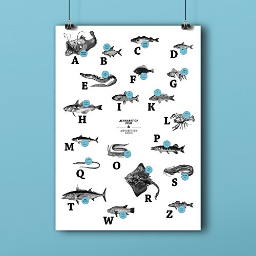 ABC der Fische / alphabet of fish in Deutsch/Englisch, DIN A1, Plakat, Poster