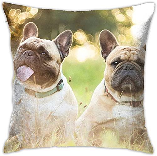 BONRI Funda de Almohada, Dos Bulldogs franceses, Funda de Almohada Decorativa, cojín Cuadrado para sofá, Coche, 18x18