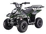 SmartDealsNow Powersports Kids ATV Quad 110cc ATV ( Choose Your Color )