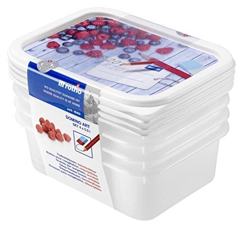 Rotho Domino 4er Set Vorratsdosen, Kunststoff (BPA-frei), , 4x 0.5 Liter (15,7 x 11,8 x 5,3 cm)